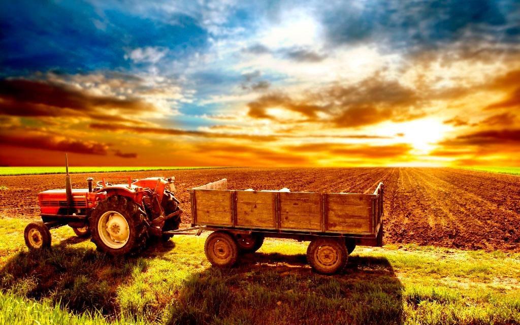 Рада приняла закон о семейных фермерских хозяйствах