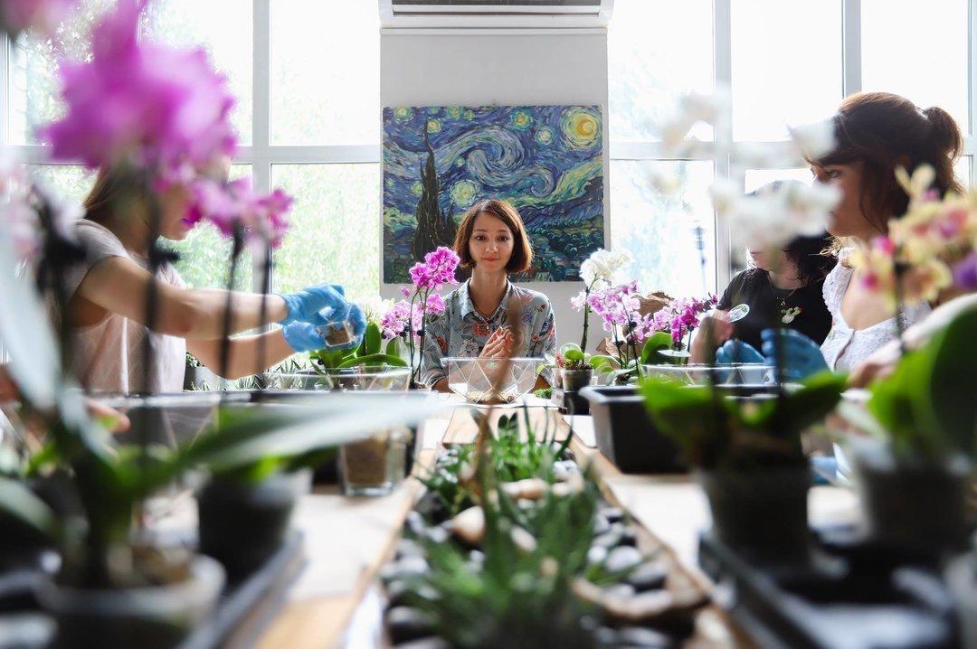 Как зарабатывать на оформлении растений: опыт украинского бренда Roslynka