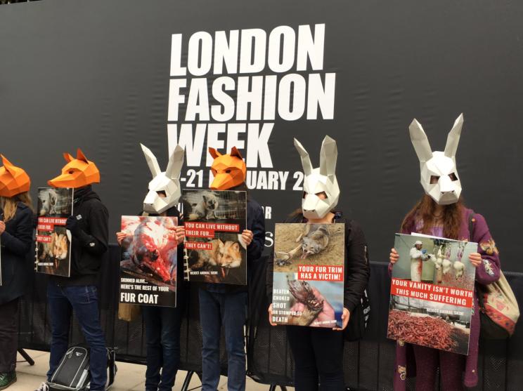 Натурального меха больше не будет на Неделе моды в Лондоне