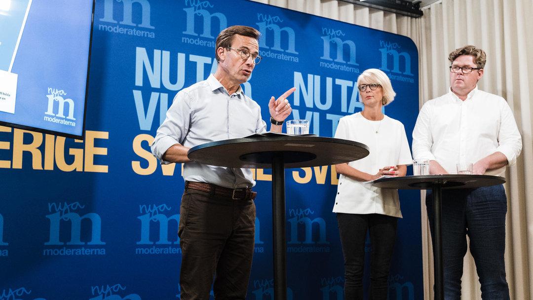 Парламентские выборы Швеции: антимигрантская партия заняла третье место